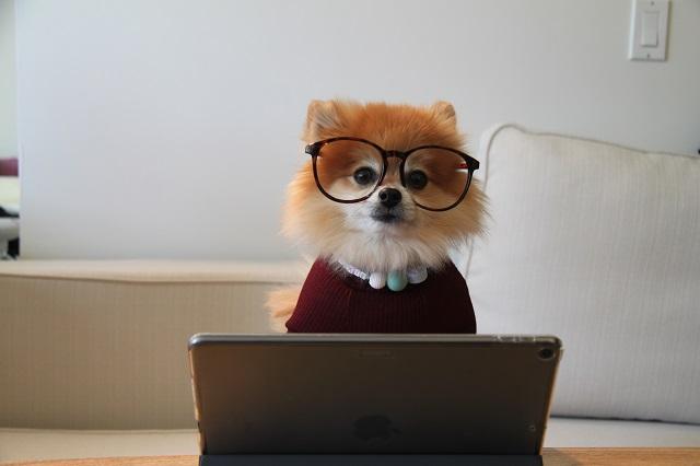 信ぴょう性のあるブログ作っていますか?